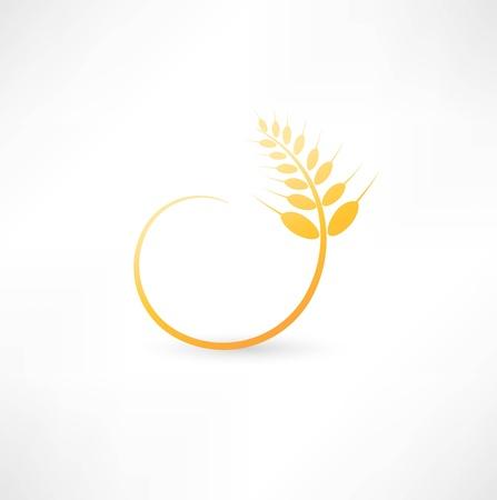 Wheat ears icon Stock Illustratie