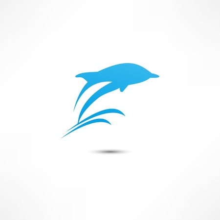 dolphin jumping: Dolphin