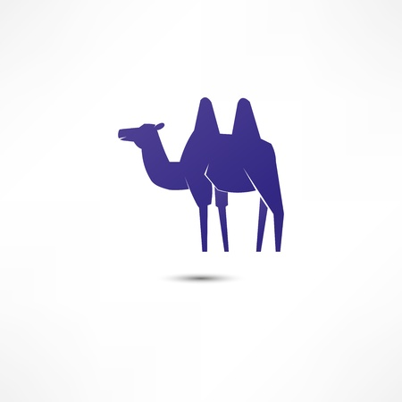 zoo dry: Camel Icon