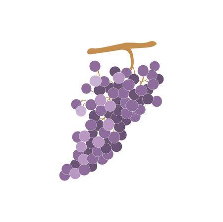 grapevine sign Stock Vector - 17159248