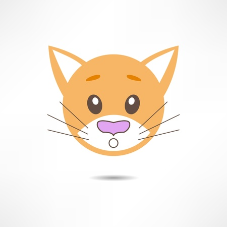 wiskers: Surprised cat.