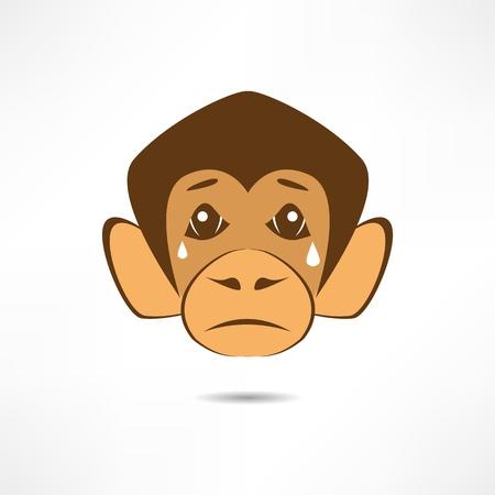 Crying Monkey. Stock Vector - 17463694