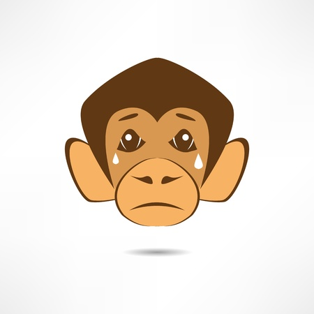 baboon: Crying Monkey.
