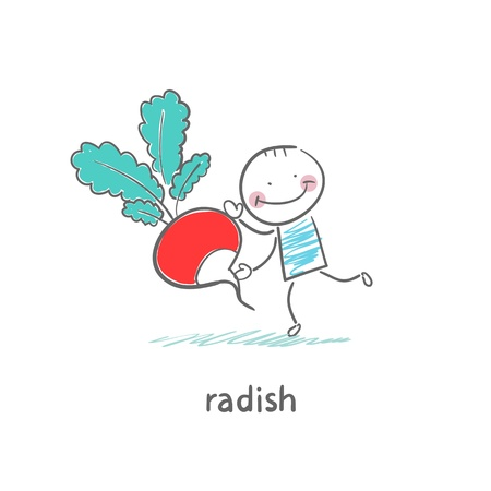 Radishes and people Illustration