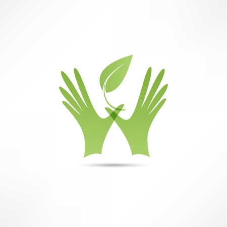 earth hands: Hands and plant icon Illustration