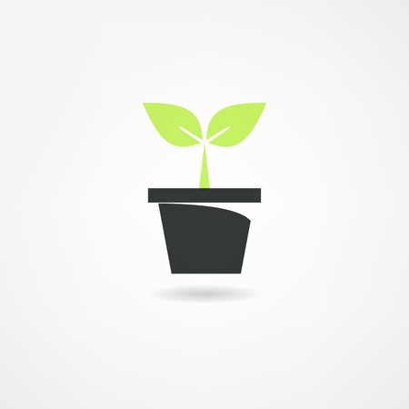 plants icon Stock Vector - 21447958