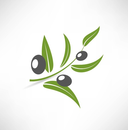 olive tree: olives icon