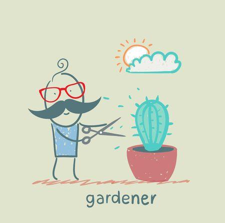 mows: gardener mows cactus