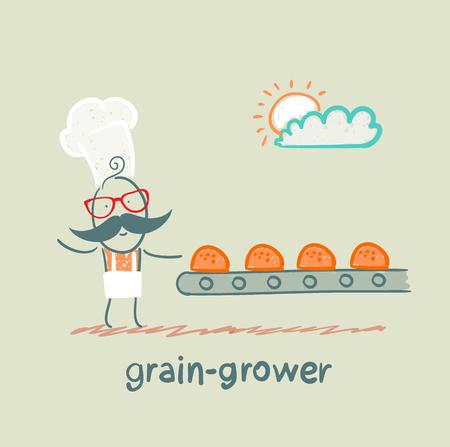 grower: grain grower looks at the conveyor rolls