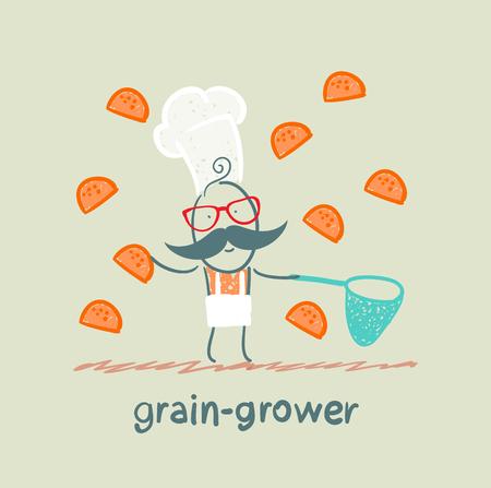 plate camera: grain grower catches a net rolls Illustration