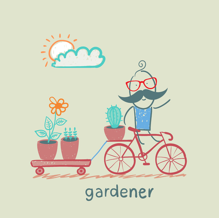 cactus flower: gardener carries a bicycle plant
