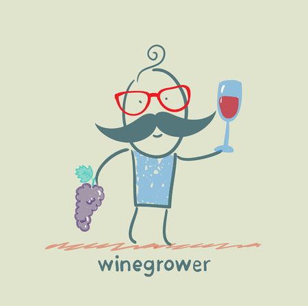 winegrower holds a bunch of grapes and looks at a glass of wine Vector