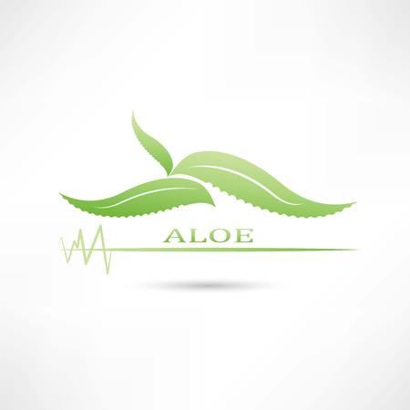 aloe green icon Vector