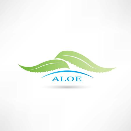 creative aloe icon Vector