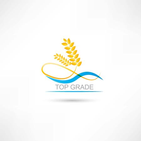 wheat and blue line icon Vector