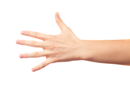 five fingers: Five fingers on white background