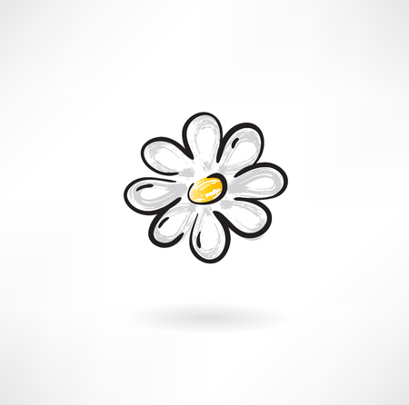 camomile flower: camomile flower