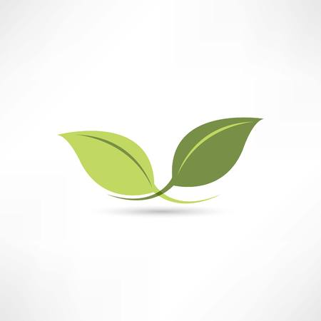 dripped: plant icon