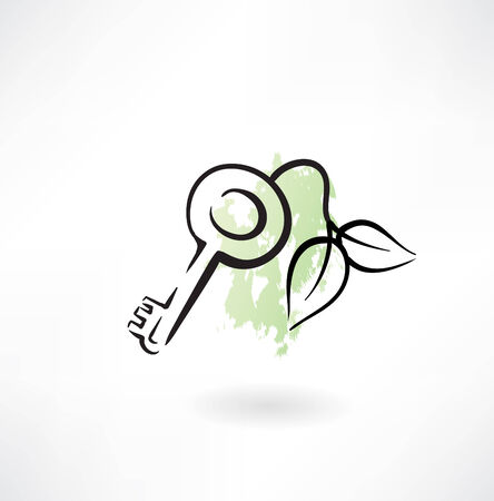 dwell house: eco key grunge icon