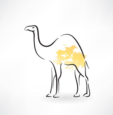 camel grunge icon Vector
