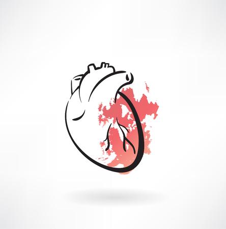 corazon humano: Coraz�n icono Vectores