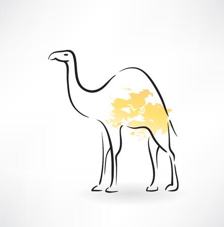 camel grunge icon Vector