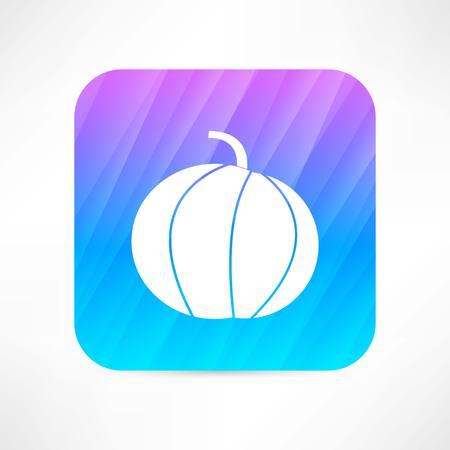 pumpkin icon Vector