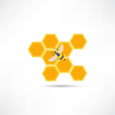 honey comb: Honey and bee icon Illustration