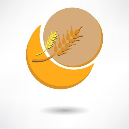 grain: grain background with sun rays