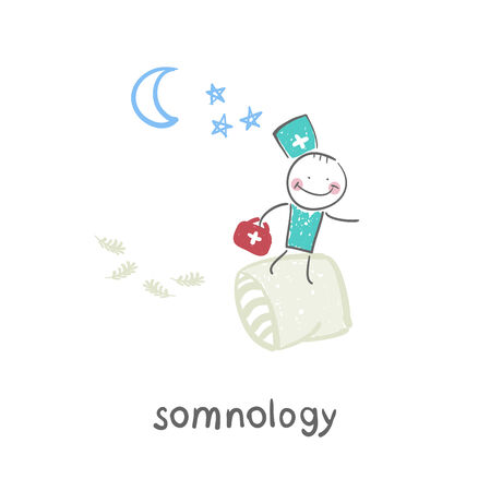 somnology flies on pillows