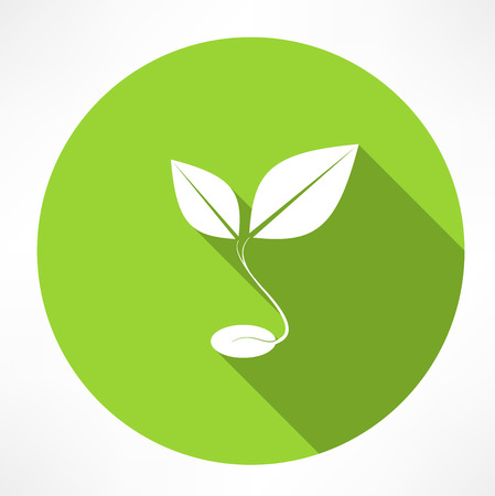 sprout grain icon