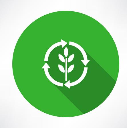 Eco green leaf logo