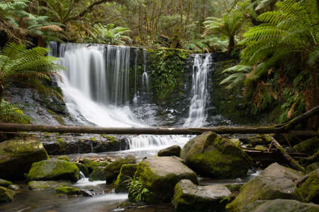 horseshoe falls: Horseshoe Falls in Mt Field National Park early on a winters morning in Tasmania, Australia
