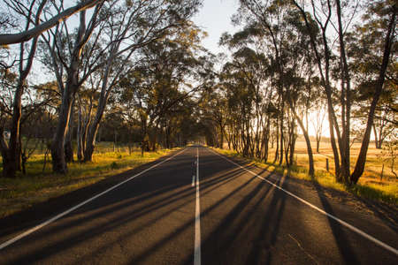 Australian Country Road at Sunset Фото со стока