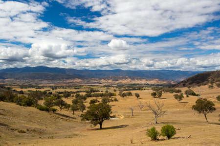 the snowy mountains: Australian Rural Scene near Snowy Mountains