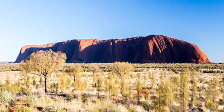 ayers: Majestic Uluru at sunrise on a clear winters morning in the Northern Territory, Australia