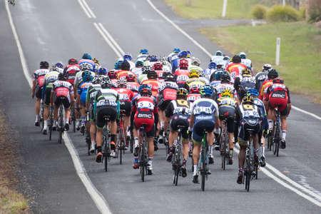 evans: MELBOURNE, AUSTRALIA - FEBRUARY 1: The inaugral Cadel Evans Great Ocean Road Race Editorial