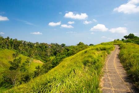 The famous Campuhan Ridge Walk in Ubud, Bali, Indonesia 写真素材