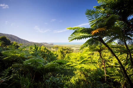 daintree: The view from Mount Alexandra lookout in the Daintree region towards the Great Barrier Reef and Coral Sea on a sunny winters day in Queensland, Australia Stock Photo