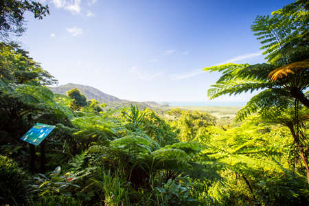 The view from Mount Alexandra lookout in the Daintree region towards the Great Barrier Reef and Coral Sea on a sunny winters day in Queensland, Australia Stock Photo