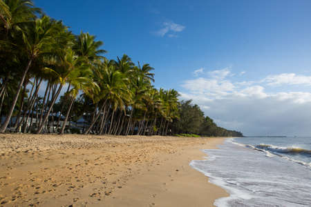 beachfront: The famous idyllic beachfront of Palm Cove on a winters day in Queensland, Australia