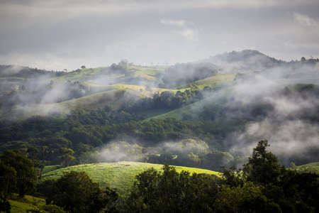 qld: Atherton Tablelands on a misty winters morning in Queensland, Australia