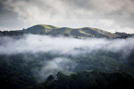 tableland: Atherton Tablelands on a misty winters morning in Queensland, Australia