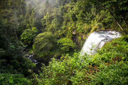 The famous Zillie Falls waterfall in the Atherton Tablelands area of Queensland, Australia