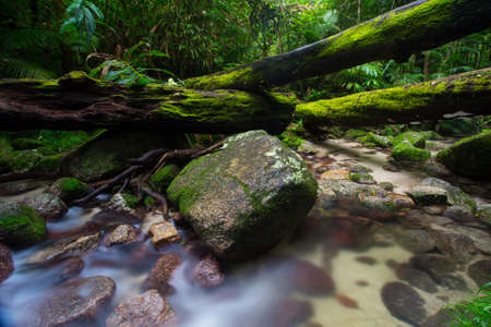 daintree: A typical water and rocks scene in Mossman Gorge, Queensland, Australia Stock Photo