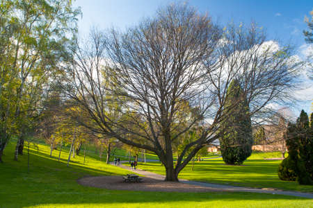 rotunda: Royal Tasmania Botanical Gardens on a sunny spring day in Hobart, Tasmania, Australia