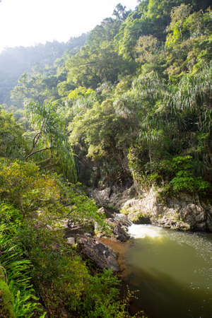 qld: The famous Crystal Cascades near Cairns in Queensland, Australia