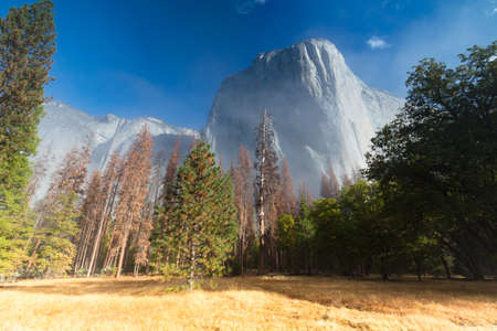 The view from within Yosemite Valley of surrounding rock faces at sunrise in the fog in California, USA
