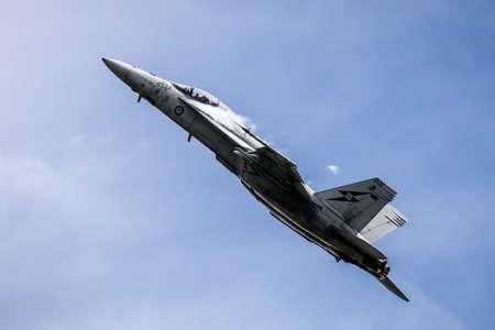 空軍 A44 ボーイング FA 18F スーパーホー ネット 報道画像