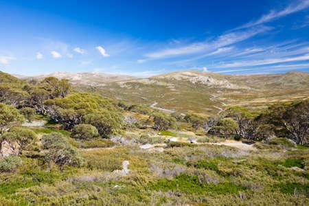 charlotte: Mount Kosciuszko View